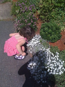 Haley stopping to smell the flowers before I could appreciate how important those moments are. We had so little time together before the seizures and drugs invaded.